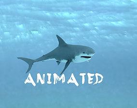 Shark Animated 3D model