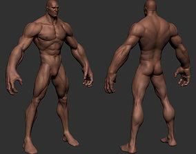 Stylize Male Anatomy 3D