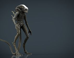 Alien Xenomorph 3D