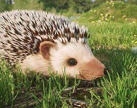 3D model Hedgehog for Vray and Octane