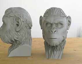 Hail Caesar 3D print model