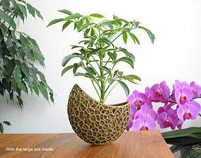 A 2-part burgeoning capsule Planter 3D printable model