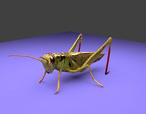 Grasshopper 3D asset animated
