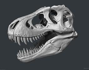 Tyrannosaurus Rex Skull Bones Sculpture 3D