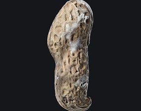 3D model Roasted Peanut shell C