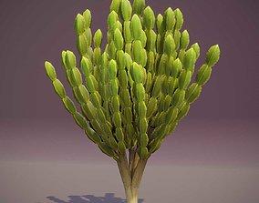 realtime Cartoon Candelabra Tree 3D Model
