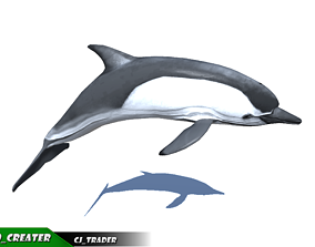 animated Low-Poly Dolphin Rigged Animated 3D model