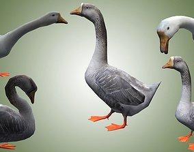 Goose lowpoly 3D model