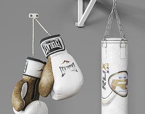 3D Sports boxing set
