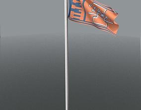 Flag Pole 3D usa