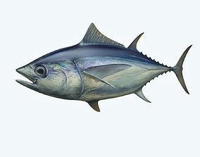 Yellowfin Tuna 3D model