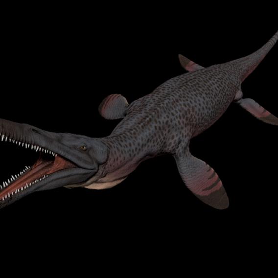 Pilosaurus Funkei