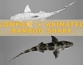 3D asset Bamboo Shark