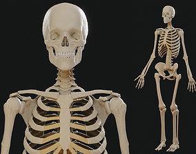 Skeleton PBR 3D asset realtime