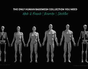 3D asset Ultimate Human Basemesh Collection