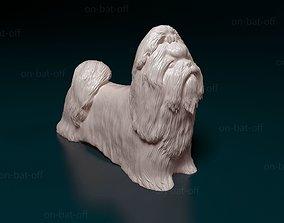 3D print model Shih Tzu dog
