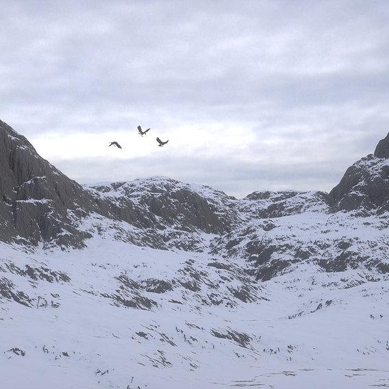 Mountain under the Snow