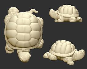 tortoise 3D printable model
