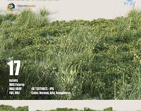 Grass pack B 3D model