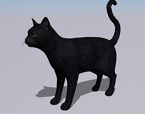Black Cat Rigged and GIFT 3D asset low-poly