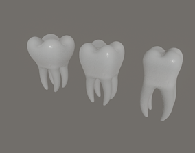 3D model Tooth