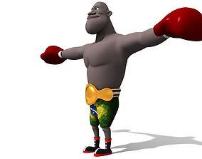 Boxer 3D