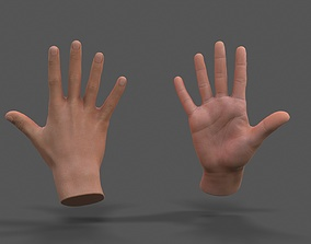 3D asset VR Hands - Male Hands