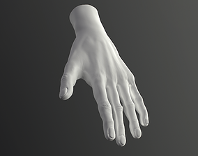 Male Hand High-Poly model