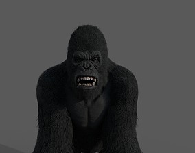 3D model Realistic Gorilla Face Rigged Game Ready