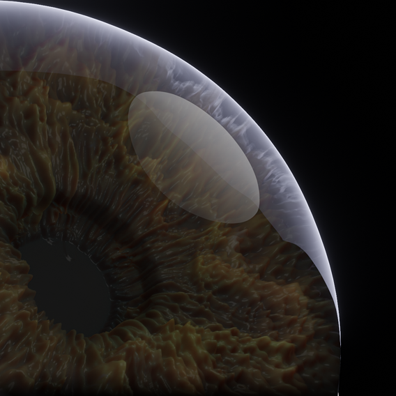 eye model rendered pictures
