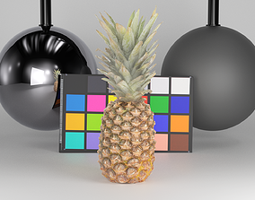 3D model game-ready Pineapple 29