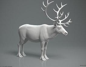 stag Reindeer Caribou - Highpoly Sculpture 3D