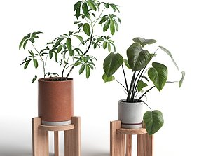 Pots with Plants 2 3D