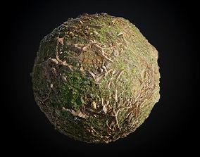3D model Tree Roots Grass Seamless BR Texture
