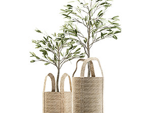 Wicker basket containing the delicate olive 3D model 3