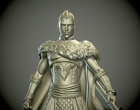 Young man Warrior or Paladin pathfinder 3D print model