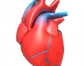 3D Human Heart atrium