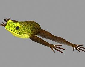 realtime Frog Model