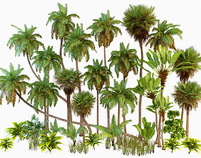 Palm trees Tropical 3D model rigged