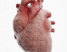 Clay Heart 3D model