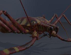 Giant Tick 3D model