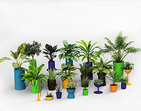 tree Plants collection 3D model