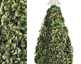 3D New Year tree made of succulents 420