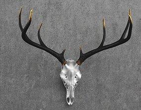 Deer Skull Mount 3D model