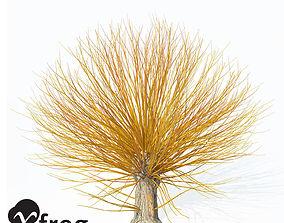 3D model XfrogPlants Golden Willow