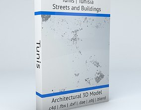 Tunis Streets and Buildings 3D model