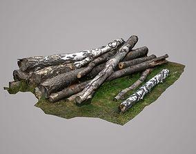 3D asset Stack of wood