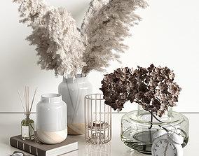 3D Decorative set with dry plants 4