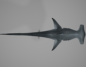 3D asset animated Hammerhead Shark