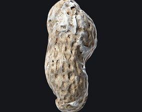 3D model Roasted Peanut shell B